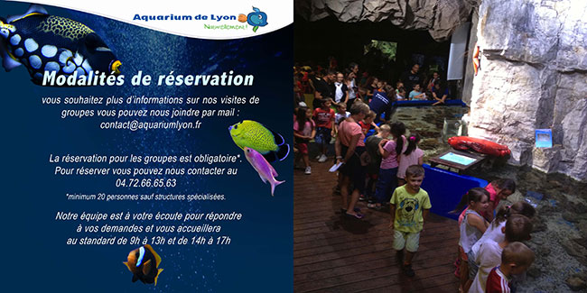 De la maternelle au cycle secondaire - College - Aquarium de Lyon