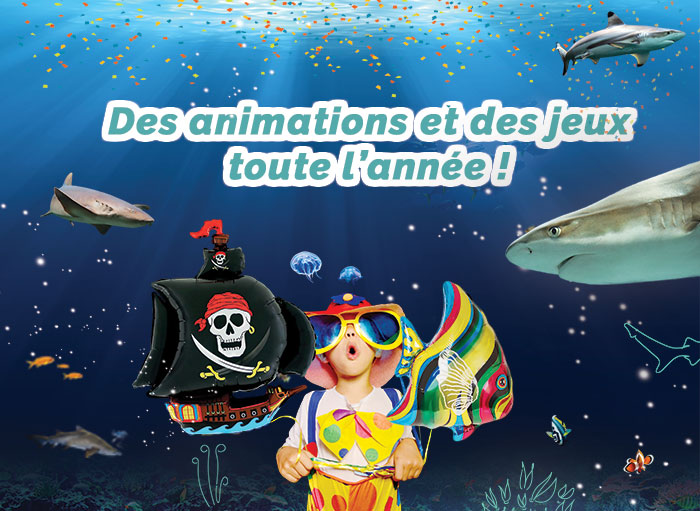 Animations & jeux