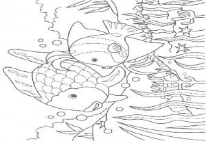 Fish bow sky – Aquarium Lyon
