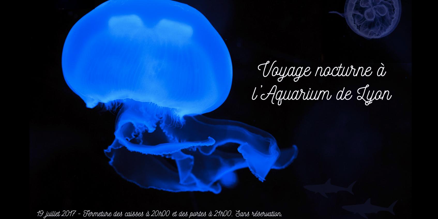 Aquarium lyon - Nocturne foire de lyon 2017 ...